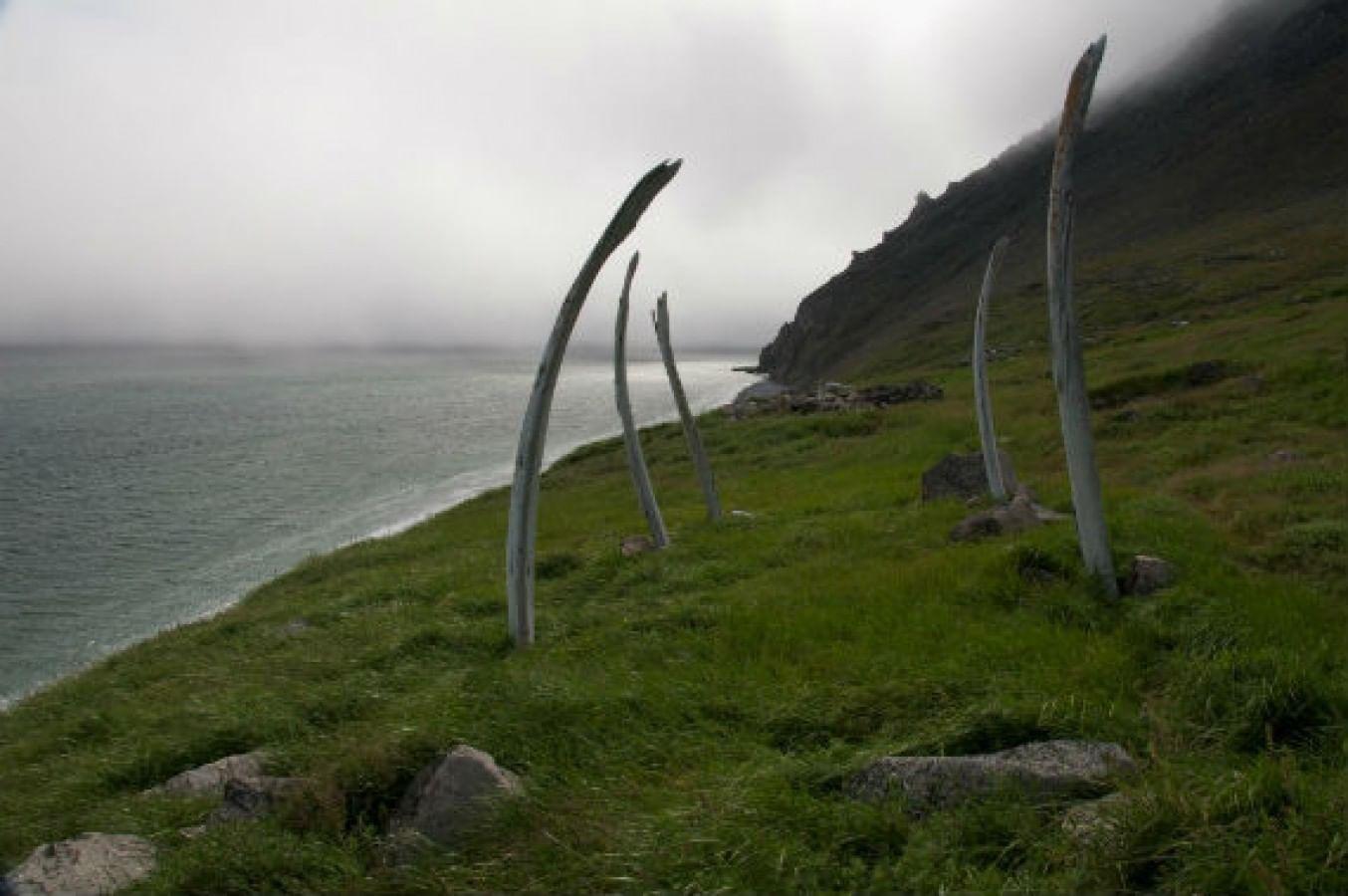 «Китовая аллея» (Сиклюк)
