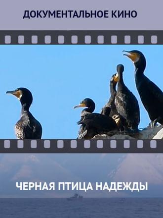 Черная птица надежды