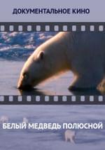 Белый медведь полюсной