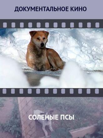 Соленые псы