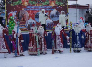 Областной конкурс «Настоящий Дед Мороз»