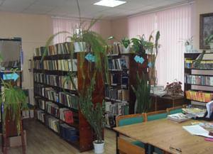 Остаповская сельская библиотека