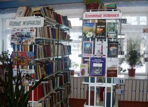 Василевская сельская библиотека-филиал № 9