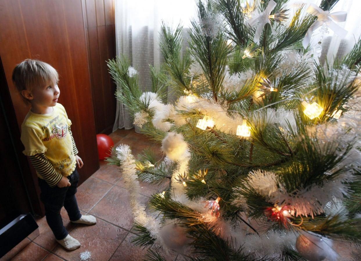 Новогодняя елка. История традиции_3