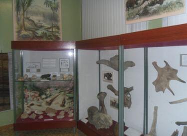 Выставка «Донской. Страницы истории»