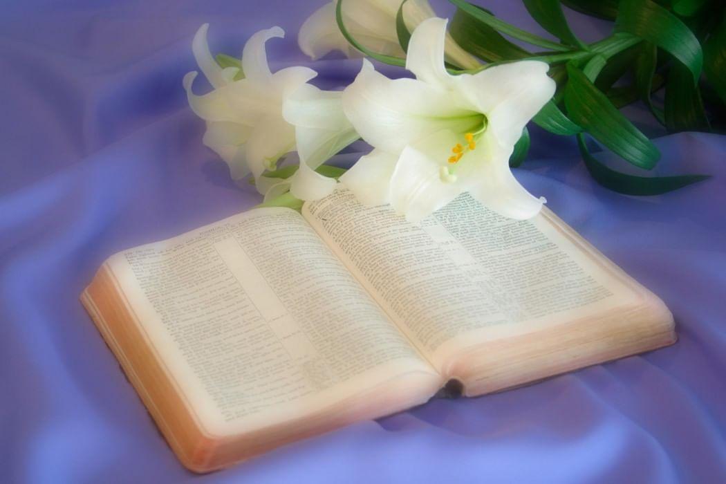 Библия картинки с надписями с днем рождения