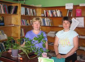 Кстининская библиотека