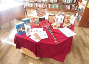 Засосенская модельная библиотека
