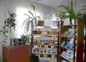 Васильдольская модельная публичная библиотека
