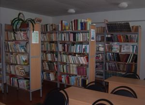Богородская модельная публичная библиотека