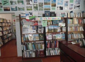 Головинская поселенческая модельная библиотека