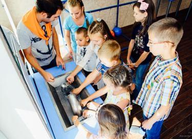 Интерактивная экспозиция Музея занимательных наук Эйнштейна