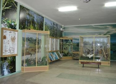 Экспозиция «Природа Нижнего Дона»