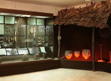 Экспозиция «Древнейшее прошлое Сергиево-Посадского края (VII тыс. до н. э. – II тыс. н. э.)»