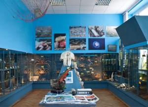 Музей Всероссийского научно-исследовательского института рыбного хозяйства и океанографии «Мир морских глубин»
