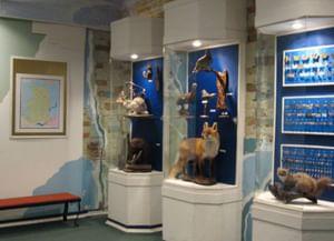 Историко-культурный музей-заповедник Удмуртской Республики «Иднакар»