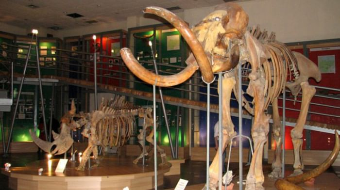 Музей мамонта Республики Саха (Якутия)