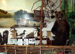 Новоторьяльский краеведческий музей