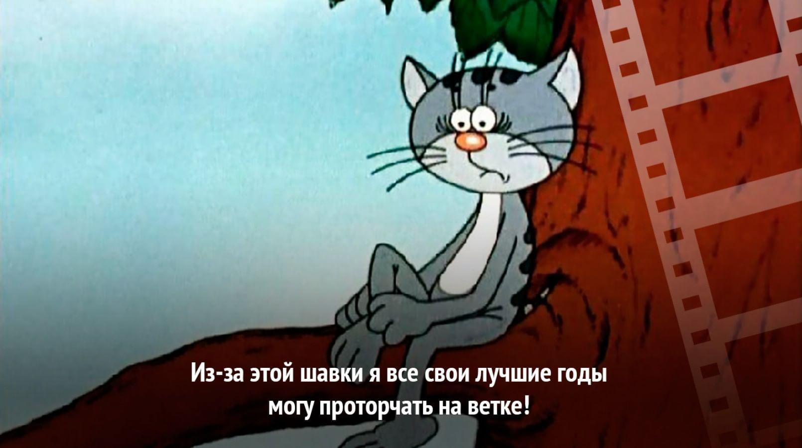 Кадр из мультфильма «Котенок с улицы Лизюкова»
