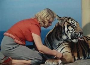 Животные - кинозвезды