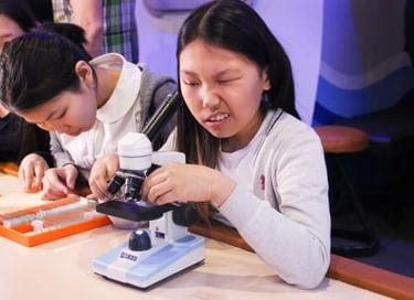 Образовательная программа «Природа под микроскопом. Жизнь в воде озера Байкал»