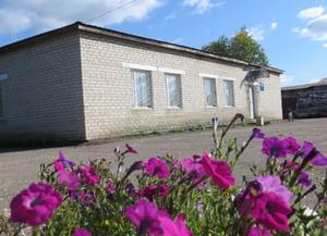 Чёлсменская сельская библиотека-филиал №28