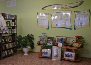 Сыйрышбашевская сельская модельная библиотека