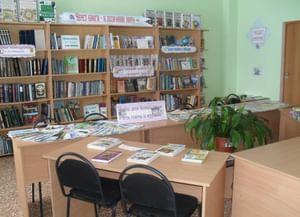 Старокалмашевская сельская модельная библиотека