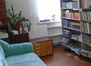 Багаевская поселенческая библиотека