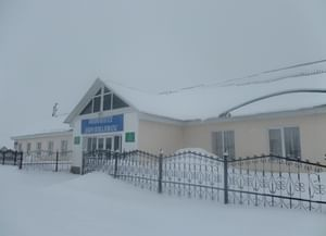 Аючевская сельская библиотека №3