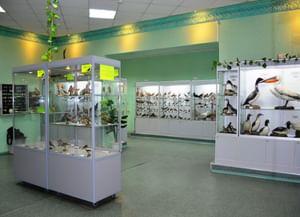 Выставочный зал Кировского городского зоологического музея