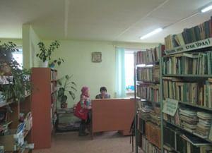 Библиотека р.п. Дружинино