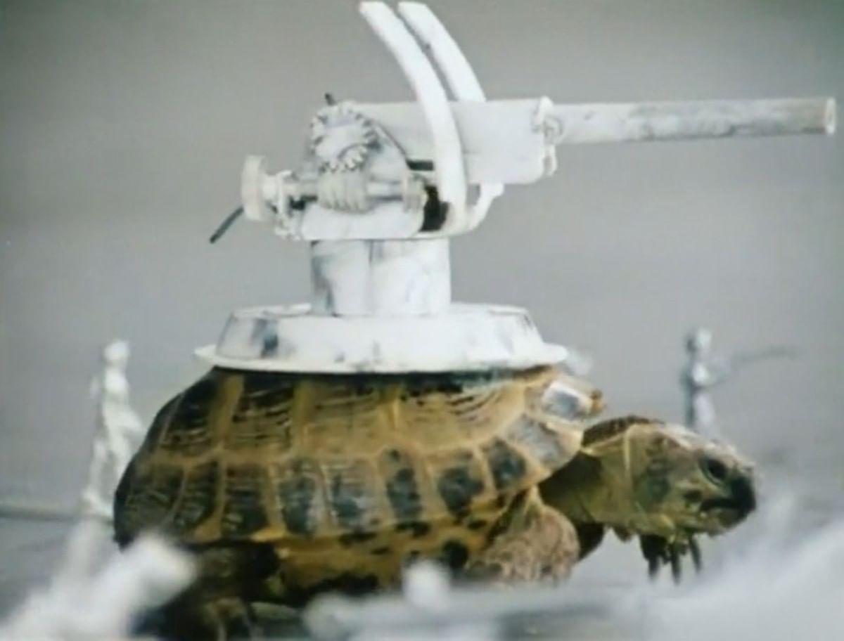 Кадры из фильма «Внимание, черепаха!»
