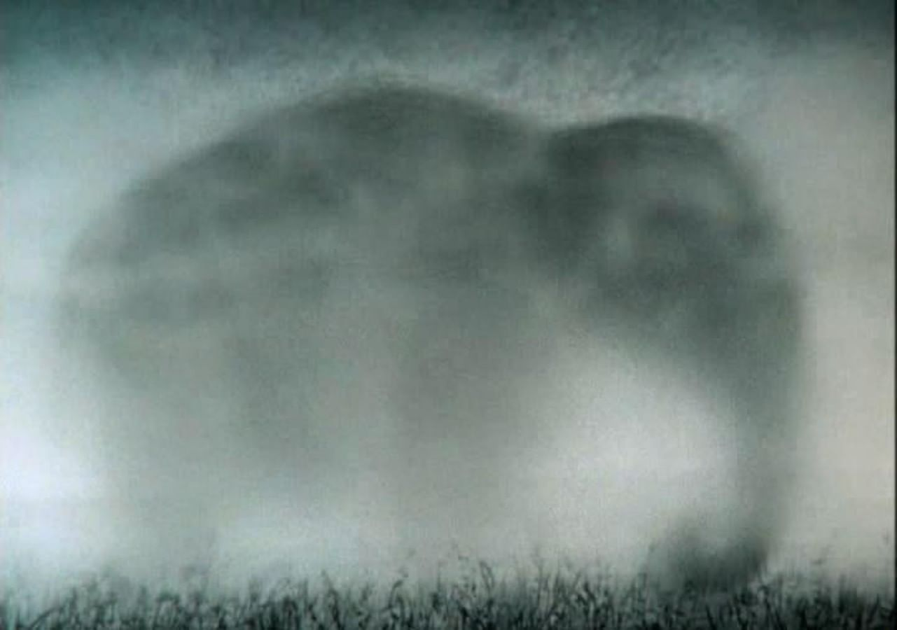 Кадры из фильма «Ёжик в тумане»