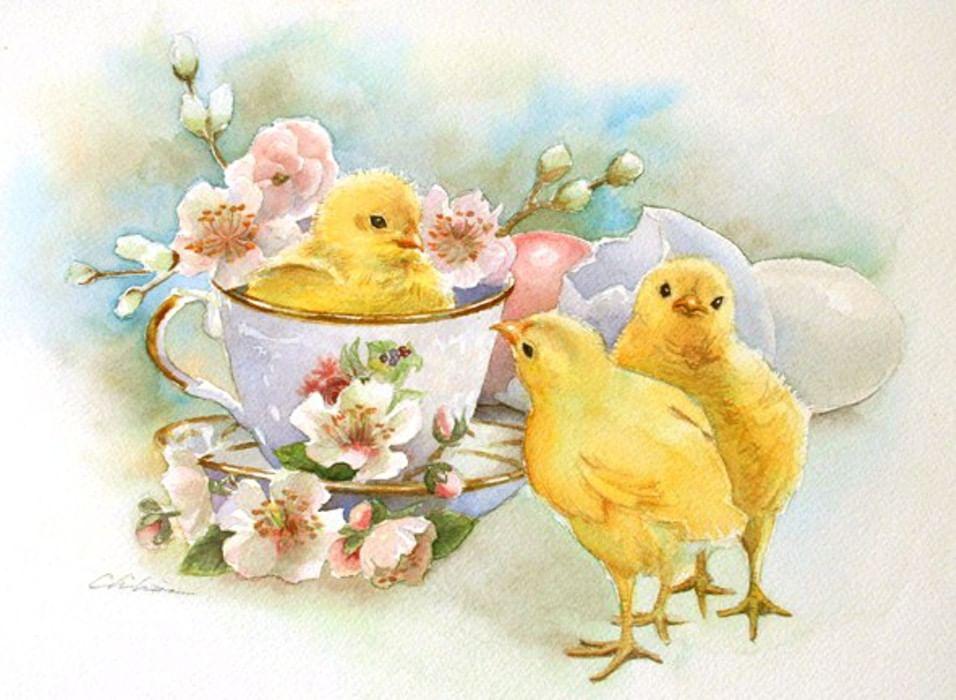 цыплята открытки брюнетке
