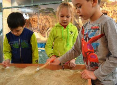 Интерактивная экскурсия «Археология. Миллионы лет назад»