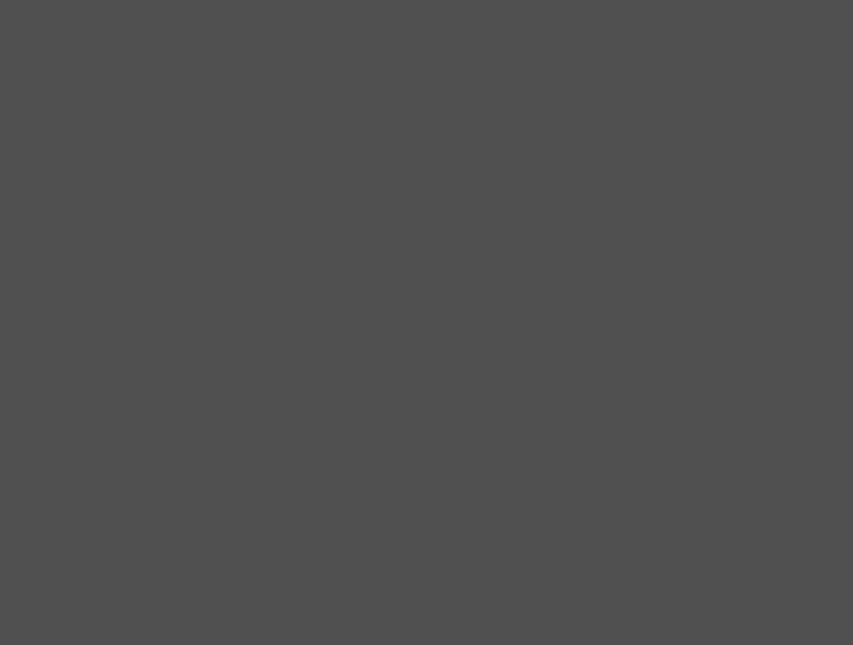 История о фильме: «Стенька Разин («Понизовая вольница»)». Галерея 1