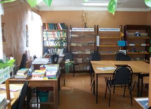 Болотновская сельская библиотека