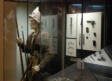 Экспозиция «Древняя история Татарстана»