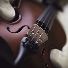 С Чего Начинать Знакомство Классической Музыкой