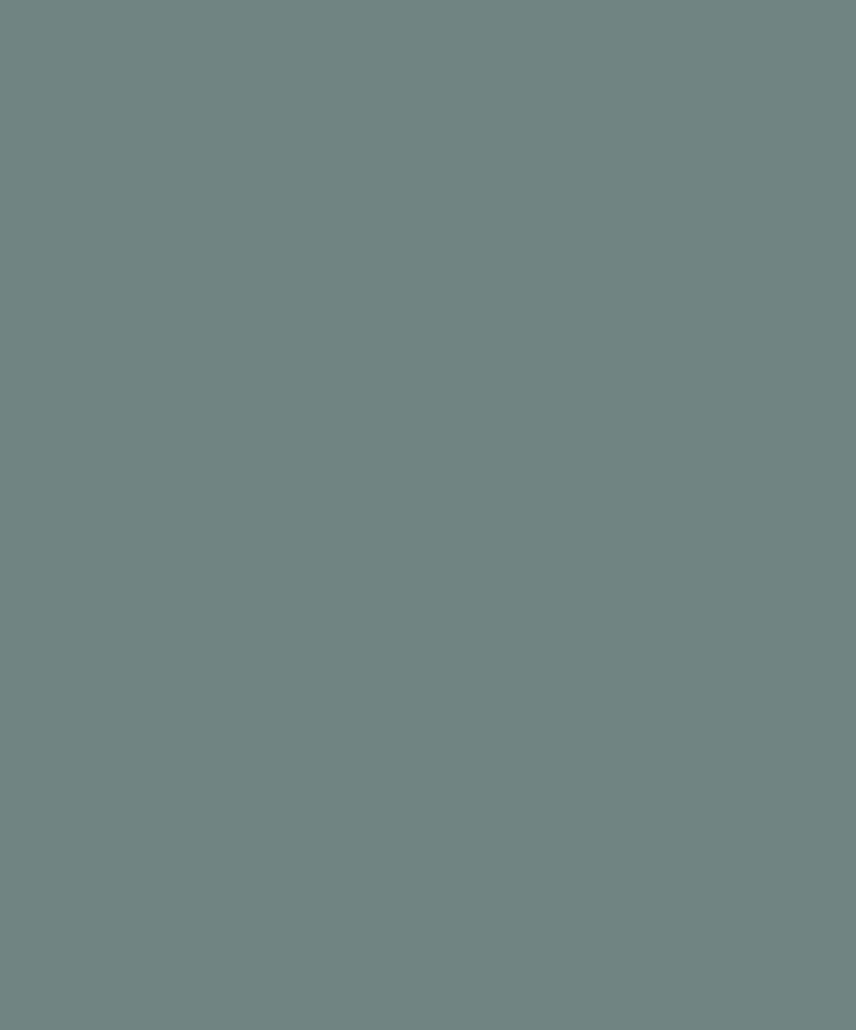 Марк Шагал. Галерея 2