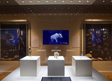 Выставка «Зарайская верхнепалеолитическая стоянка»