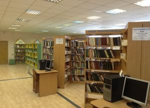 Библиотека № 252