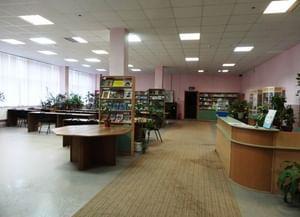 Библиотека № 253