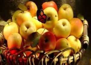 Три Спаса августа: мед, яблоки, хлеб