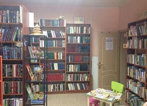 Библиотека № 256