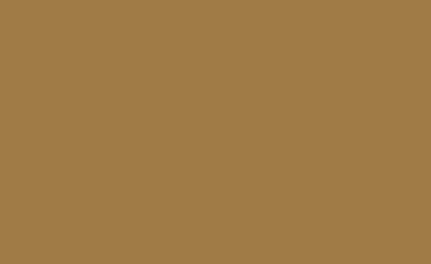 519070.average - Народный промысел родного края