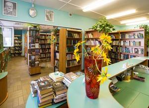 Библиотека № 195
