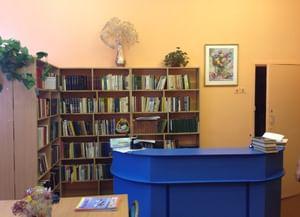 Библиотека № 265