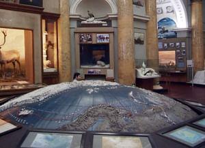 Там, где всегда мороз: 6 музеев, посвященных Арктике